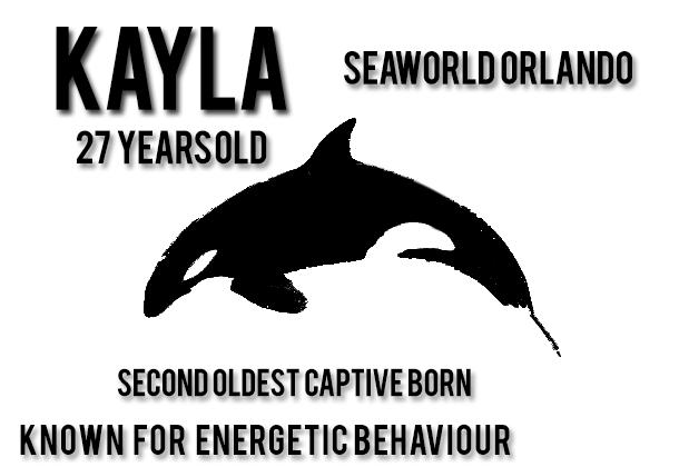 10- Kayla