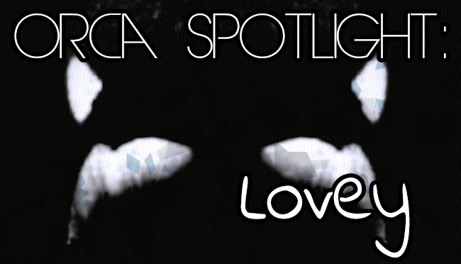 Spotlight on Lovey | Whale Wednesday