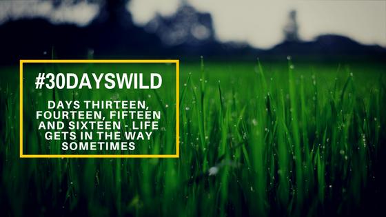 #30DaysWild | Days Thirteen, Fourteen, Fifteen and Sixteen – Life Gets In the WaySometimes