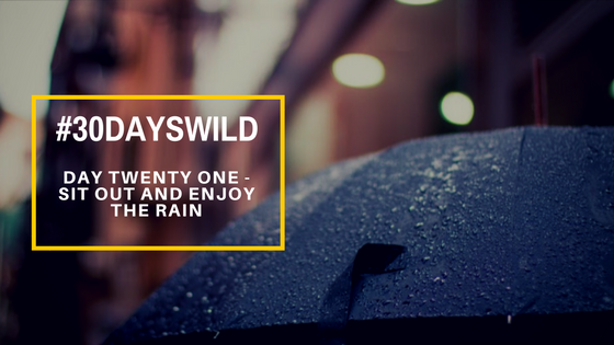 #30DaysWild | Day Twenty One – Sit Out and Enjoy the Rain