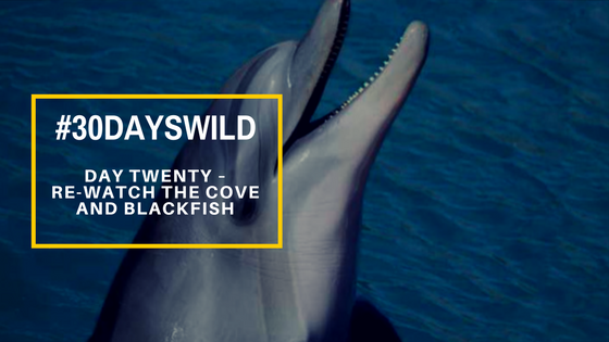 #30DaysWild | Day Twenty – Re-Watch The Cove and Blackfish